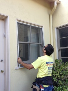 professional window screen installation service