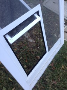 pet door on swinging screen door
